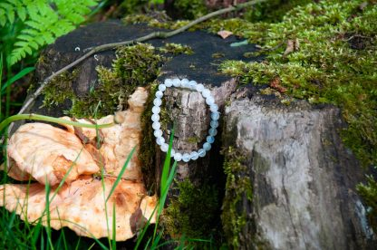 Moonstone in the wild, on a mosy tree trunk with some mushrooms