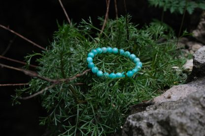 nice Amazonite resting on some plants in nature