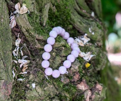 Beautiful pink kunzite resting amits the trees